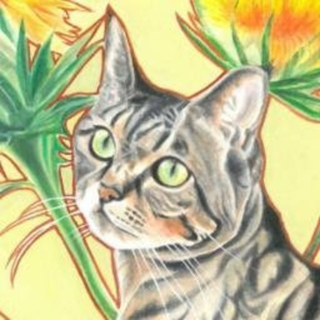 猫じゃらしのプロフィール画像