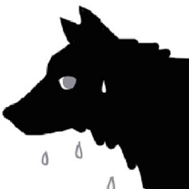 Kayaのプロフィール画像