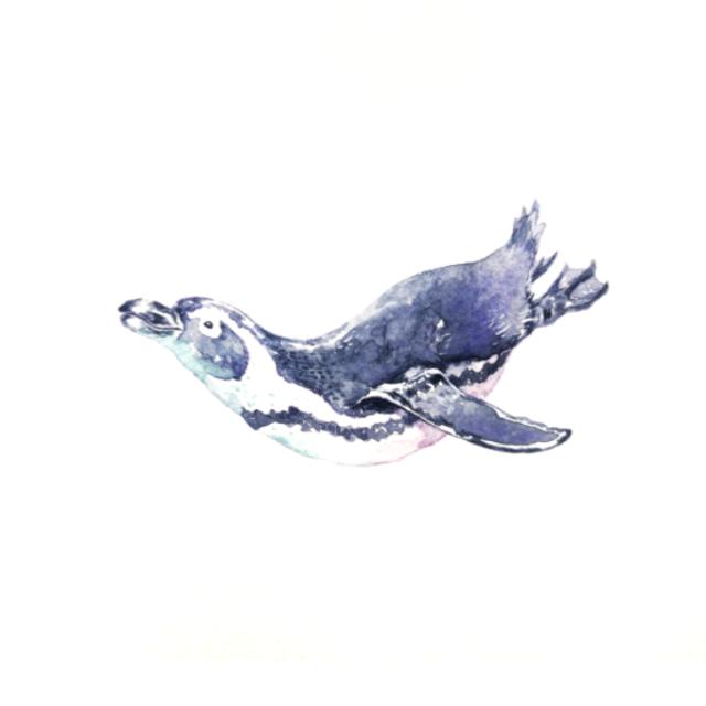 kanouのプロフィール画像