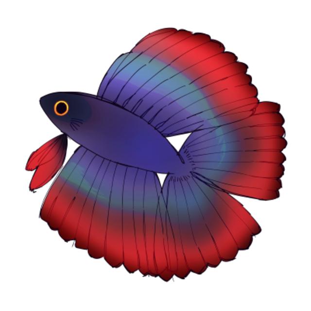 アオタケのプロフィール画像