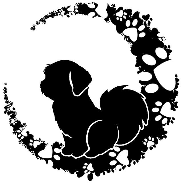 月見狗のプロフィール画像