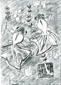 ワタリドリのイラスト