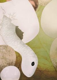 雨梟(うきょう)のイラスト