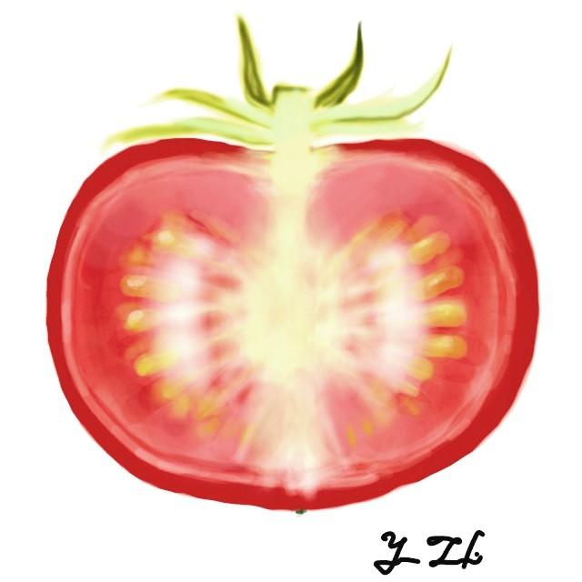 半切りトマト 作品詳細 Illustdays シンプルイラストポートフォリオ